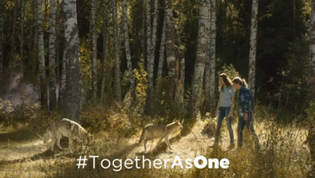 together-as-one-the-wolves